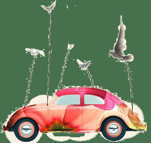 voiture kaiman