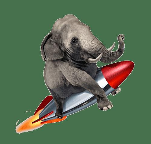 éléphant fusée kaiman