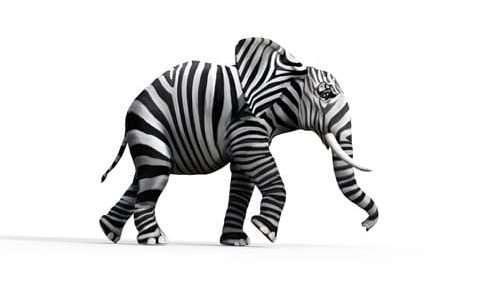 éléphant surréalisme kaiman
